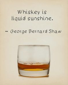 Whiskey Prints, Discounted Set of Nine Whiskey Quotes Whiskey Poster Bourbon Print Scotch Sale Bar Art Whiskey Gifts, Whiskey Cocktails, Scotch Whiskey, Bourbon Whiskey, Whiskey Lemonade, Irish Whiskey, Bourbon Quotes, Whiskey Quotes, Whiskey Meme