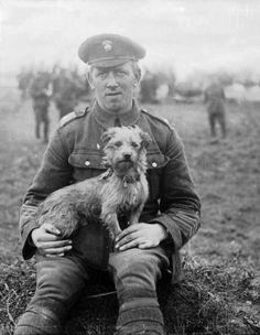 'Sammy', the mascot of the Northumberland Fusiliers, was gassed during the…