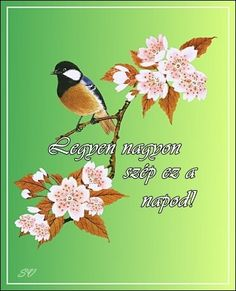 Szép napot Good Morning Good Night, Animals And Pets, Diy And Crafts, Birds, Fantasy, Pretty, Pets, Bird, Fantasy Books