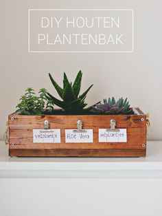 DIY wooden planter! Really cute and awesome <3