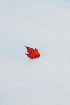 An Early Snow