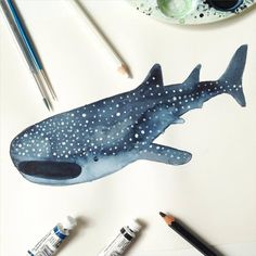 Having a whale shark of a time. by marcmartinillo Shark Illustration, Watercolor Illustration, Watercolor Art, Love Drawings, Animal Drawings, Drawing Animals, Planet Drawing, Shark Painting, Shark Drawing