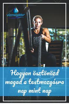 Minden, Pilates, Sports, Hs Sports, Sport, Exercise, Pilates Workout