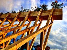 Helsinki Plant Tram | Wayward Plants | Archinect