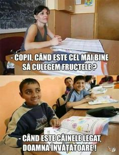 Funny pictures, Animated GIFs, Videos, Jokes, Quotes and Everything from Romania & Moldova ! Really Funny, The Funny, Funny Texts, Funny Jokes, Thing 1, Can't Stop Laughing, Sarcastic Quotes, Love Memes, Funny Comics