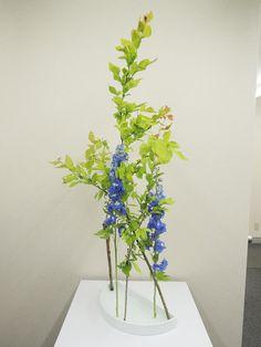 5月分のうちの教室の生徒たちの作品です。                                            テーマ:自由花  花材:ガマ、ばいかうつぎ、ガーベラ  RYUさんの作品                                        ...