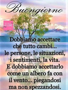 Buongiorno Italian Greetings, Carpe Diem, Good Mood, Food For Thought, Good Morning, Thoughts, Sayings, Mantra, Group