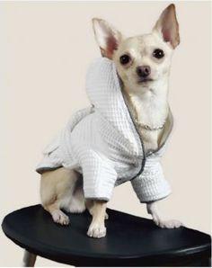 Cobweb Pattern Pet Dog Cotton Hoodie French Bulldog Clothes Shirt Chihuahua Puppy Clothes Chihuahua Soft Tshirts Pet Supplies Dog Hoodies