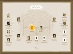 butterfly family tree gallery MyHeritage