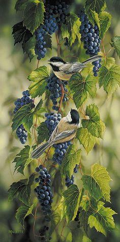 Rosemary Millette — Vineyard Morning Doves  (447×900)