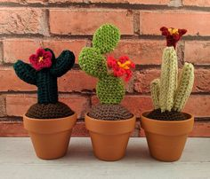 Small cactus crochet pattern | Etsy Small Cactus, Cactus Plants, Party Giveaways, Different Types Of Flowers, Dk Weight Yarn, Terracotta Pots, Yarn Needle, Green And Brown, Best Gifts