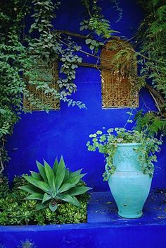 Majorelle Gardens, Marrakesh, Morocco, North Africa   |    Travel with us on an Artisan Painting Retreat in Marrakech at http://maison28marrakech.com/
