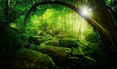 Green ~ Land