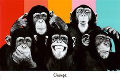 The Chimp Compilation Pop Art Print Poster Pôsters na AllPosters.com.br
