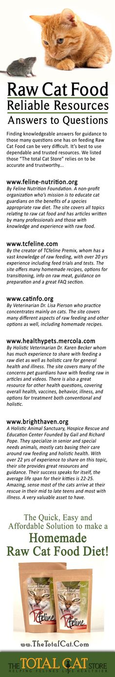 How to make your own cat food care2 healthy living page 2 cat how to make your own cat food care2 healthy living page 2 cat food pinterest cat food cat and food forumfinder Images