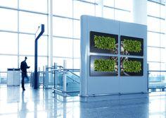 Decorative Plant Wall & Indoor Vertical Garden | Suite Plants Gallery