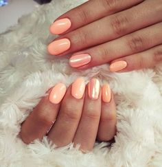 #orange #barackszín #peachcolor #aurora #aurorachrome #shinee #brightnails #sellőpor #mermaideffect #lackgel #gelpolishnails #nailartclub #artist #nailoftheday #nailinspiration #naturalnails #nailstylist #nailaddict #nailgram #nailgelpainting #neoncolors #ledcolor
