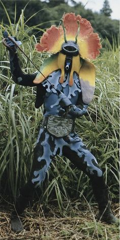 Orchid dancer