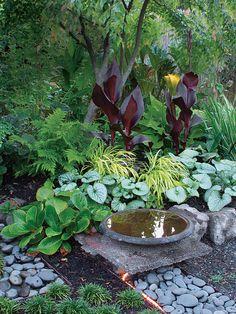 Japanese Garden Landscape, Small Japanese Garden, Japanese Garden Backyard, Japanese Garden Design, Japanese Gardens, Shade Landscaping, Garden Landscaping, Back Gardens, Outdoor Gardens