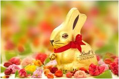with the this Easter, donated to for every Bunny Sold this Easter Happy Easter, Easter Bunny, Lindt Gold Bunny, Dove Chocolate Discoveries, Easter Sale, Easter Traditions, Easter Crafts, Tinkerbell, Mammals