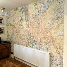 Lakelovers wallpaper map and mural
