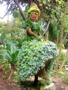"""""""Succulent People"""", created by Pat Hammer, Director of Operations of the San Diego Botanical Garden. Image by Carey Hall Waldrop, careyhallwaldrop.wordpress.com  pinned from http://inspirationgreen.com/succulent-inspiration.html"""