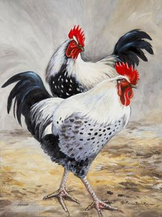 Bad Boys Canvas Print by Patricia Baehr-Ross. All canvas prints are professionally printed, assembled, and shipped within 3 - 4 business days and delivered ready-to-hang on your wall. Choose from multiple print sizes, border colors, and canvas materials. Rooster Painting, Rooster Art, Chicken Painting, Chicken Art, Arte Do Galo, Chicken Pictures, Motifs Animal, Farm Art, Chickens And Roosters