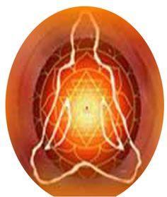 We provide information of astrologer.