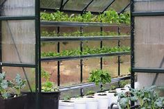 Growing food in a greenhouse is hot!