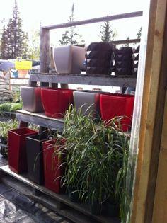 Boutique d'art de jardin   LeVert Paysage   Botanix   Mont-Tremblant   Arts de jardins   Laurentides   Pots modernes