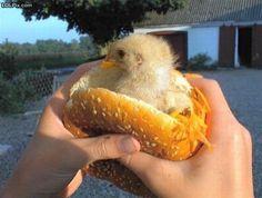 New trend in Chicken Sandwiches...