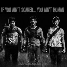 1000+ images about Maze runner on Pinterest | The Maze ...