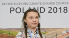 """Merkel says Greta Thunberg 'Drove Us' to Move on Climate Change. But now we are in danger of """"stalling"""" as the scourge of tainted politics rears its head. The political climate is being dictated by vested interests with """"deep pockets""""! They are playing the """"long game"""" - they are aware the public can be """"worn down""""! Systems are contrived to work that way - talkfest after talkfest, long energy-sapping processes designed to blunt public opinion, etc. The public, now have to work smarter!"""