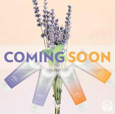NEW products coming soon! We have two luxurious body lotions and body washes inspired by Epoch Essential Oils, designed especially to invigorate your senses this season. Stay tuned for more details!