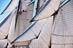 Sails      vele