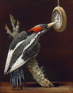 lvory billed woodpecker - Allegorical Paintings by Kevin Sloan | Art and Design