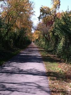 Old Plank Road Trail; Ingalls Park, IL