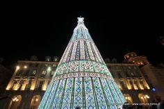 """In piazza Castello è stato inaugurato a Torino un """"Natale coi fiocchi"""" con l'accensione dell'albero di Natale"""