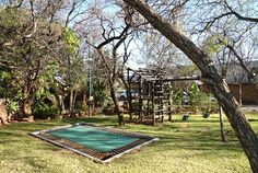 At Silver Leaves we cater for children. We offer a jungle gym and trampoline to keep the little ones occupied