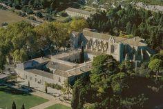 Abbaye de Valmagne Fondée en 1138, cette abbaye Cistercienne fut l'une des plus riches du sud de la France. L'église actuelle date de 1257.le charme de la fontaine du cloître, une des rares conservée dans une abbaye cistercienne, la pureté de la salle capitulaire avec sa voûte en anse de panier, ainsi que le cloître et ses jardins au charme florentin