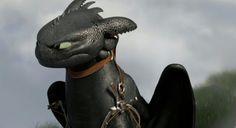 The unhappy Dragon!