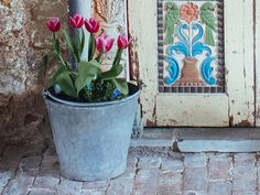 Large Vintage Metal Bucket - a truly unique way to display your flowers and plants. Bring something extraordinary into your indoor or outdoor space today. Plant Pots, Potted Plants, Galvanized Metal, Garden Planters, Vintage Metal, Shabby Chic, Bucket, Indoor, Display