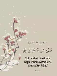 Hafiz, Bts Wallpaper, Islamic Quotes, Quran, Allah, Muslim, God, Islam, Allah Islam