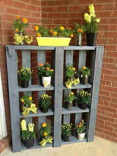 Potted plant shelf from pallet