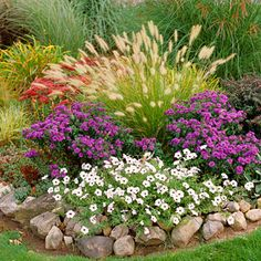 Perfect Partners for Ornamental Grasses. 'Hameln' , a dwarf fountaingrass, crowns a bed of white petunias and 'Purple Dome' aster. The bright white draws your eye to the base of the garden bed in contrast to the grass' crown of tan spikelets. The rust of Landscape Design, Garden Design, Plant Design, Corner Garden, Garden Living, Ornamental Grasses, Ornamental Grass Landscape, Tall Grasses, Front Yard Landscaping