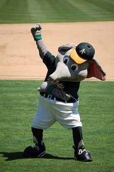 Stomper - Oakland A's pitchers and catchers are gearing up for the season! Baseball Odds, Baseball Season, Team Mascots, Baseball Mascots, Oakland Athletics, Oakland Raiders, Grey Things, Helmet Logo, Clap Clap