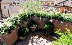 Italgarden design Albano Laziale Roma
