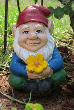 Garden gnomes make me happy, too.