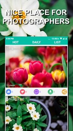 Free Download Share Photos: HD Wallpapers, 4K Backgrounds 1.1.2 APK - https://www.apkfun.download/free-download-share-photos-hd-wallpapers-4k-backgrounds-1-1-2-apk.html