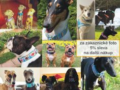 Lobo collars Dog Collars, Handmade, Animals, Wolves, Hand Made, Animales, Animaux, Animal, Animais